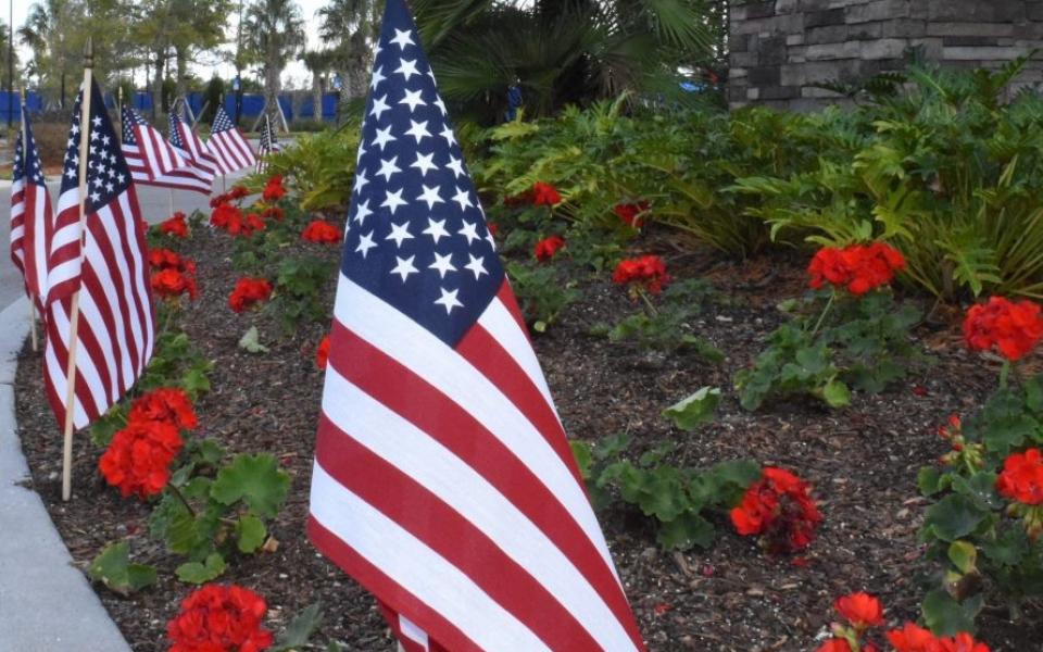 Lakewood Ranch AVMS Veterans Day 2018